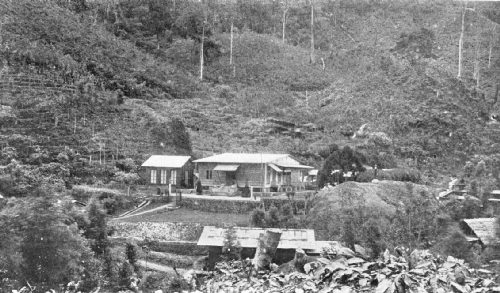Administrator's Bungalow on the Gadoeng Batoe Estate, Sumatra