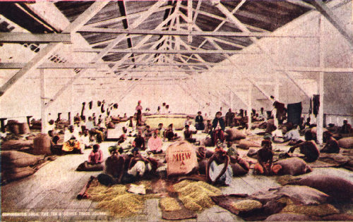 Interior of a Dutch Coffee-Cleaning Factory, Padang